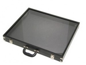 Black Acrylic-Sided Traveling Case 813 2