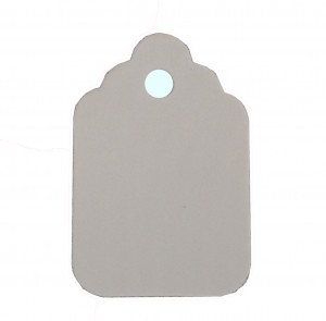 "A pack of 1,000 1 3/4"" x 2 7/8"" white paper tags (no string)."