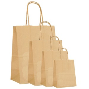Shopping Bags Kraft 1