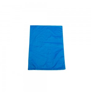 "Bags 6"" x 9"" Blue"