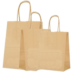 Shopping Bags Brown 250/Box Several Sizes Available